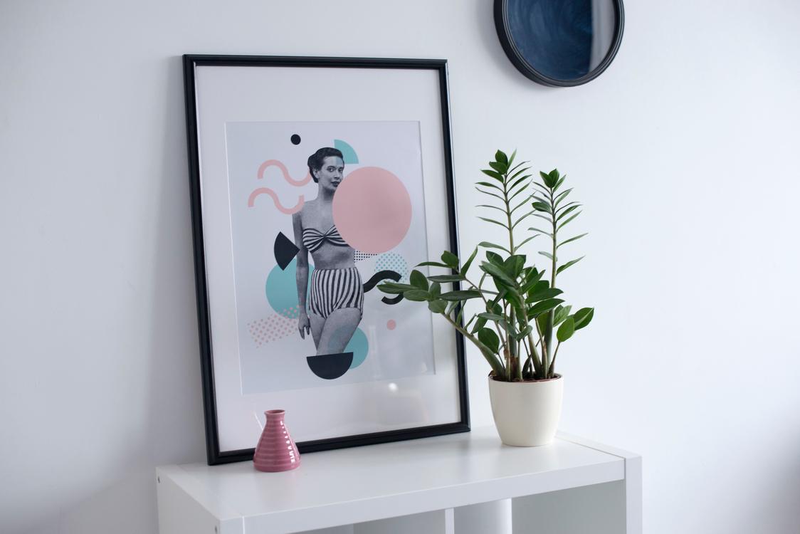 Shelf,Furniture,Picture Frames