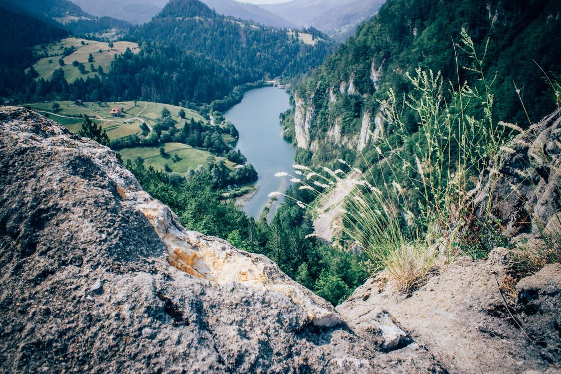 Plant Community,Mountain,River
