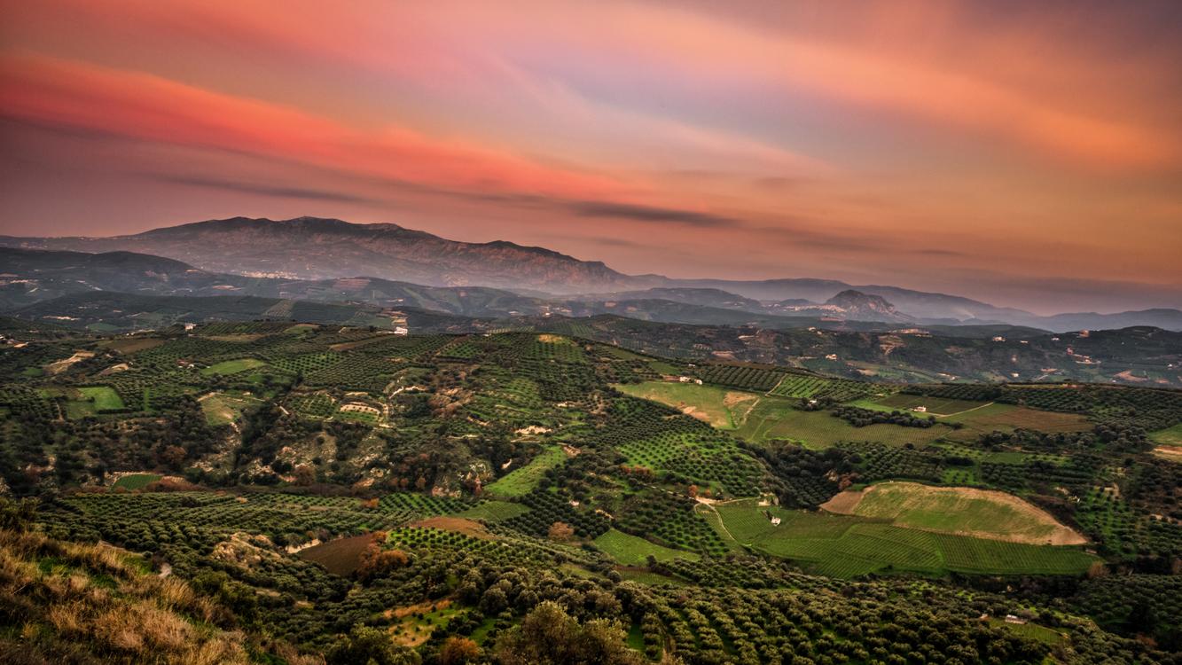 Atmosphere,Meadow,Mount Scenery