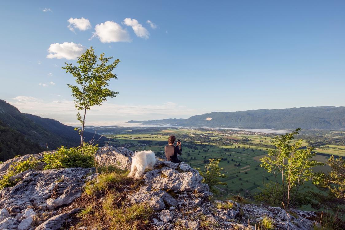 Wilderness,Shrubland,Mount Scenery