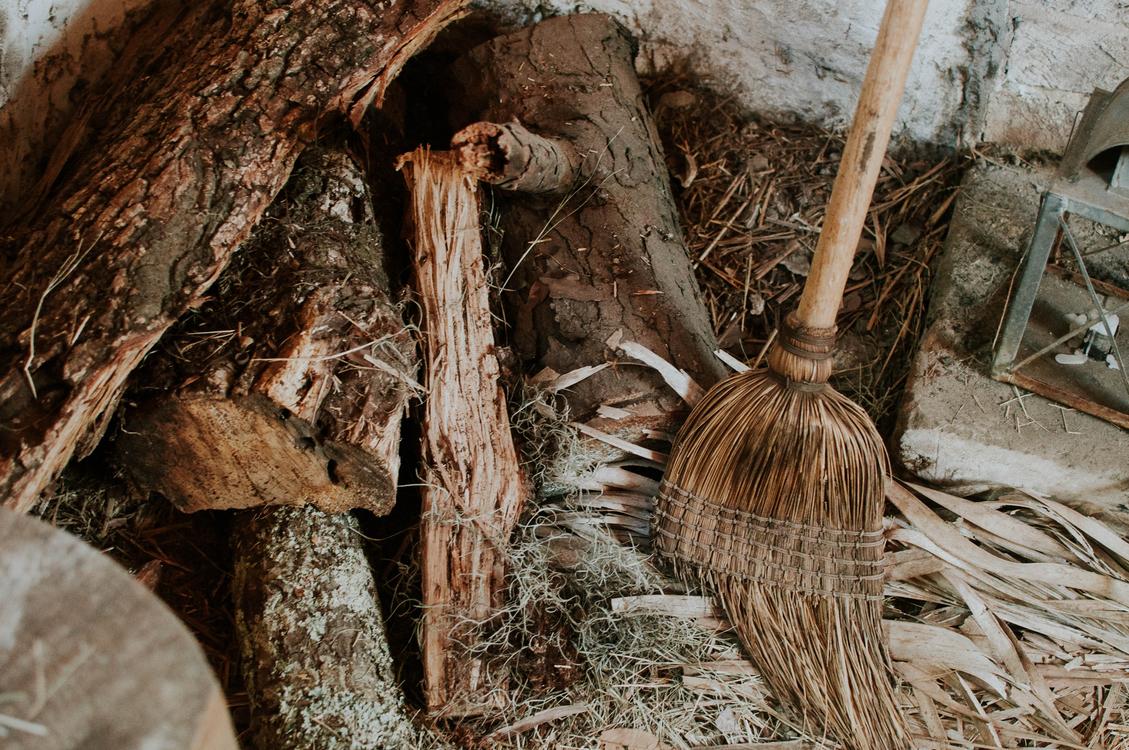 Wood,Tree,Witchcraft