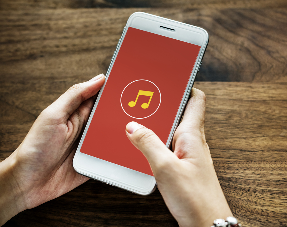 Music download Spotify Musician Music library CC0