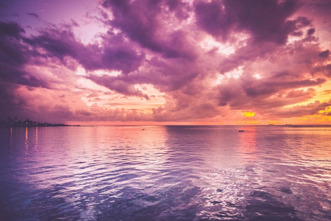 Purple prose Desktop Wallpaper Color Sunset