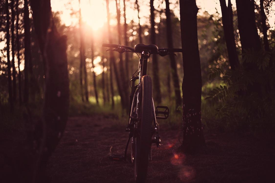Atmosphere,Bicycle,Sky