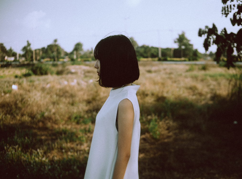 Summer,Tree,Photography