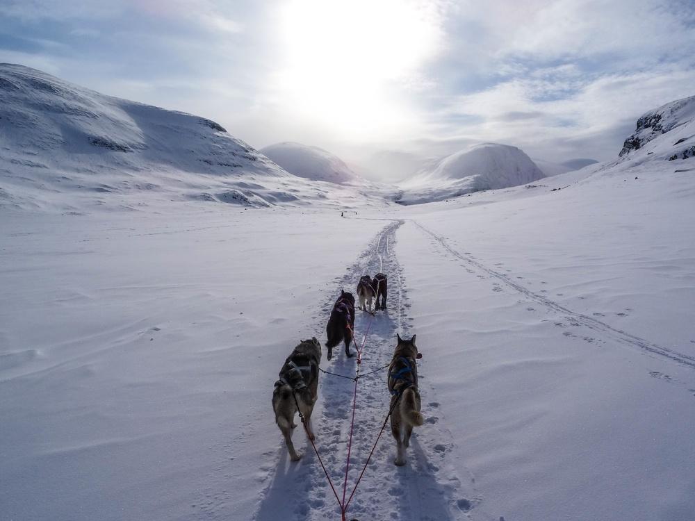 Terrain,Mountaineering,Ice