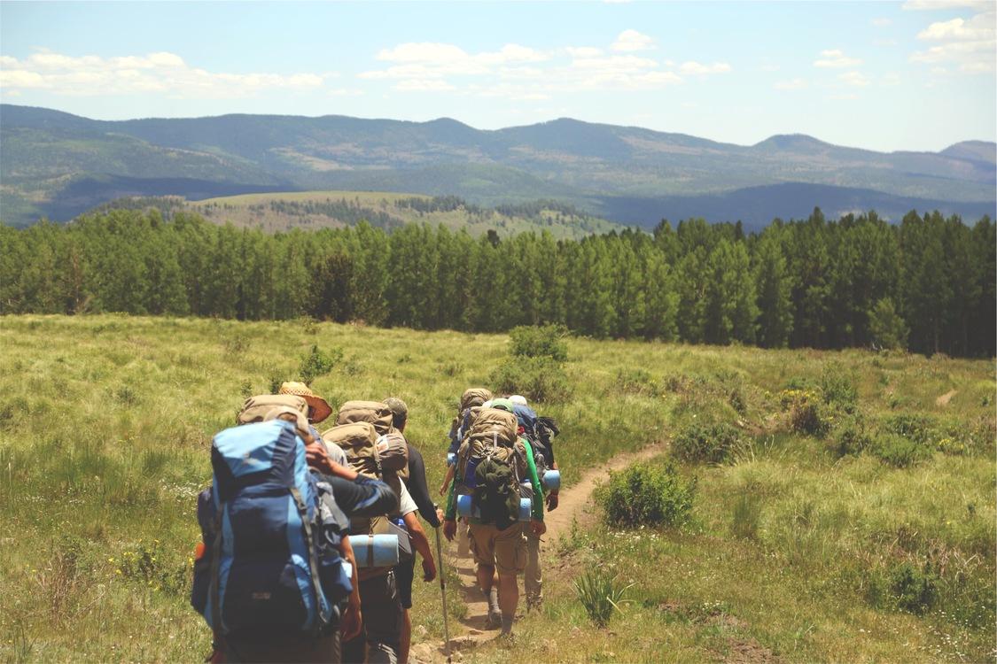 Walking,Meadow,Hiking