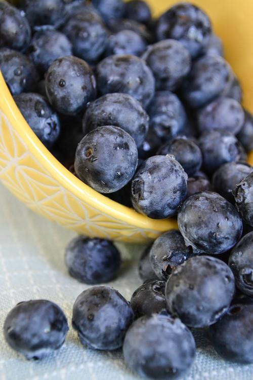 Prune,Bilberry,Food