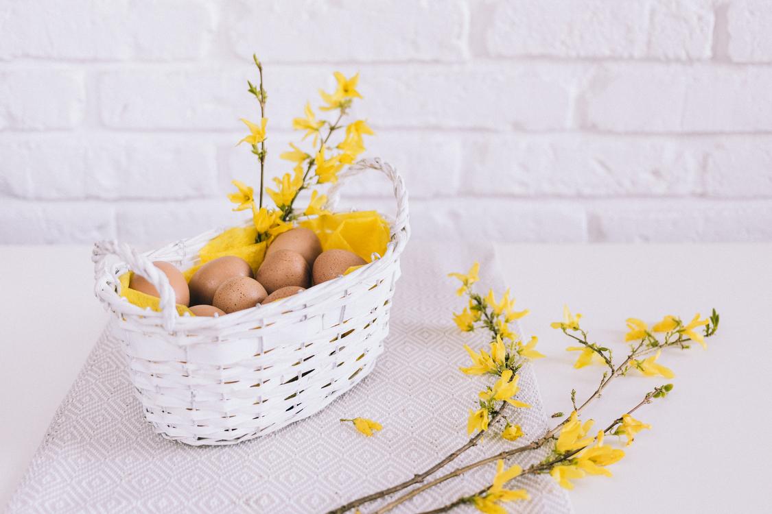 Flower,Flowerpot,Yellow