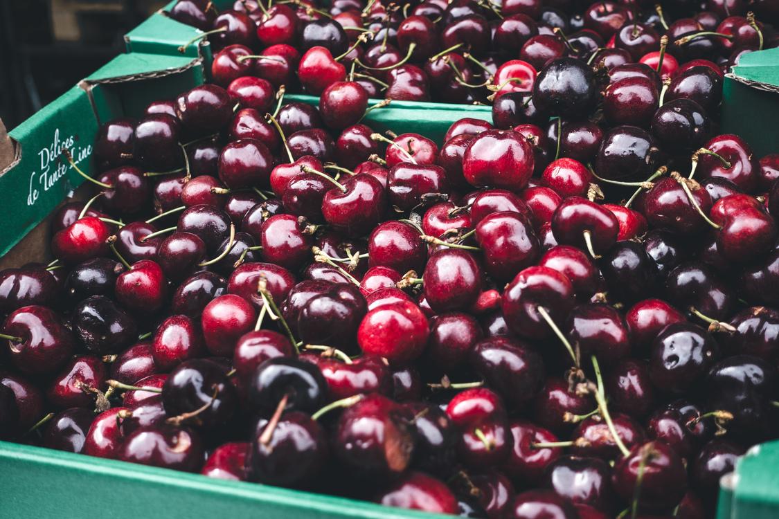 Plant,Huckleberry,Frutti Di Bosco