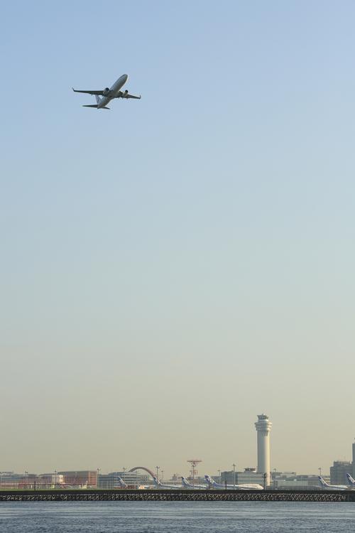 Flight,Horizon,Landing