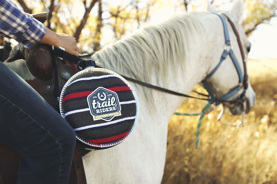 Horse Grooming,Horse,Livestock