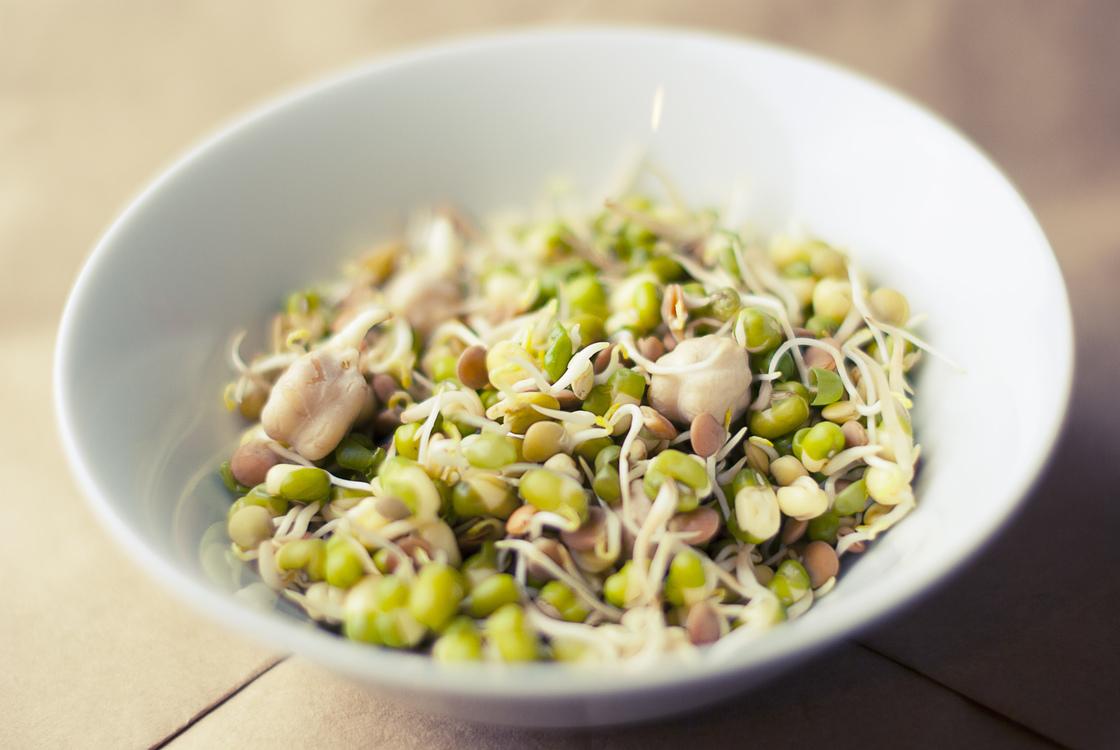 Vegetarian Food,Commodity,Salad