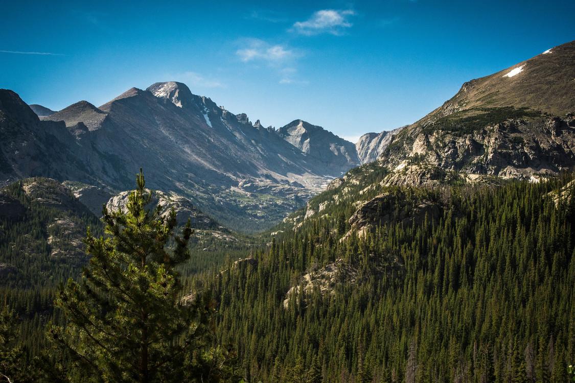 Meadow,Wilderness,Massif
