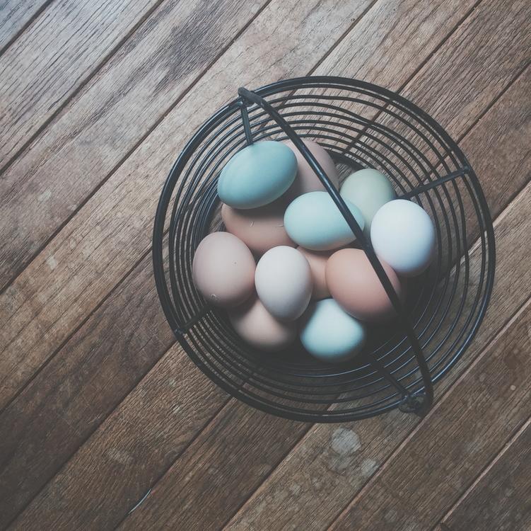 Egg hunt Easter egg Easter Bunny
