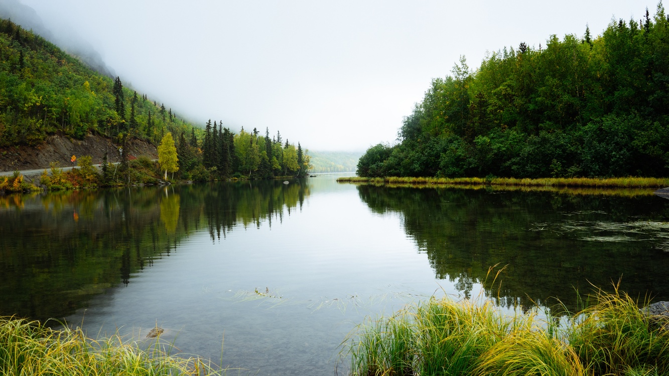 Creek,Wilderness,Loch