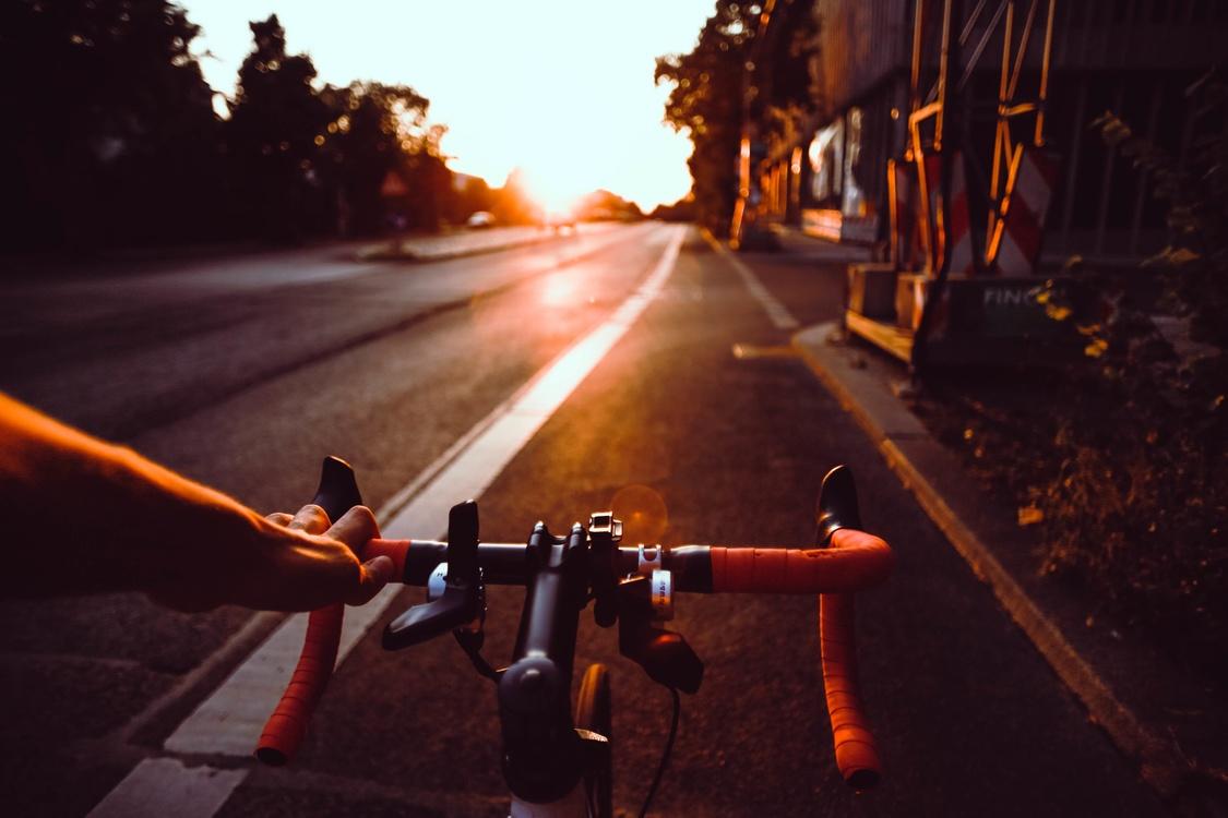 Lane,Evening,Cycling