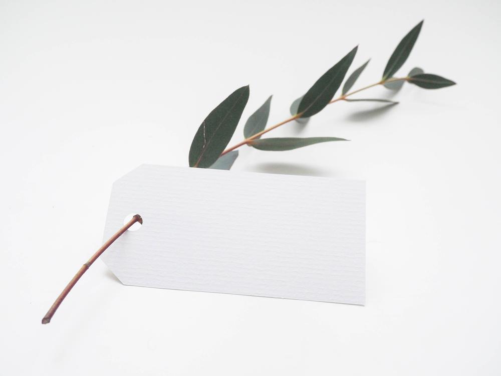 Paper,Leaf,Mockup