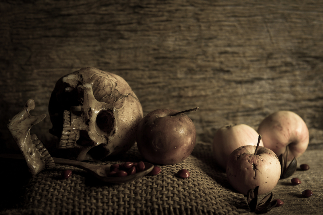 Skull,Painting,Still Life Photography