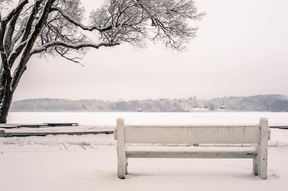 Winter,Monochrome Photography,Freezing