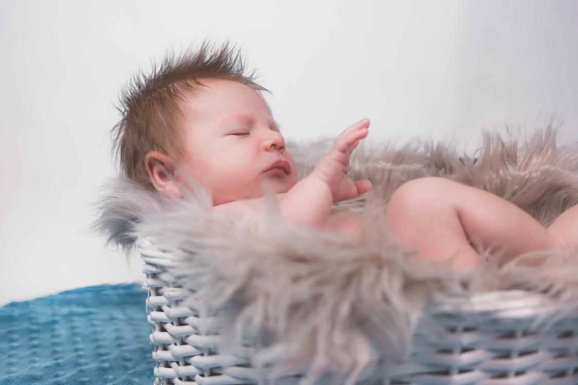 Infant,Toddler,Fur