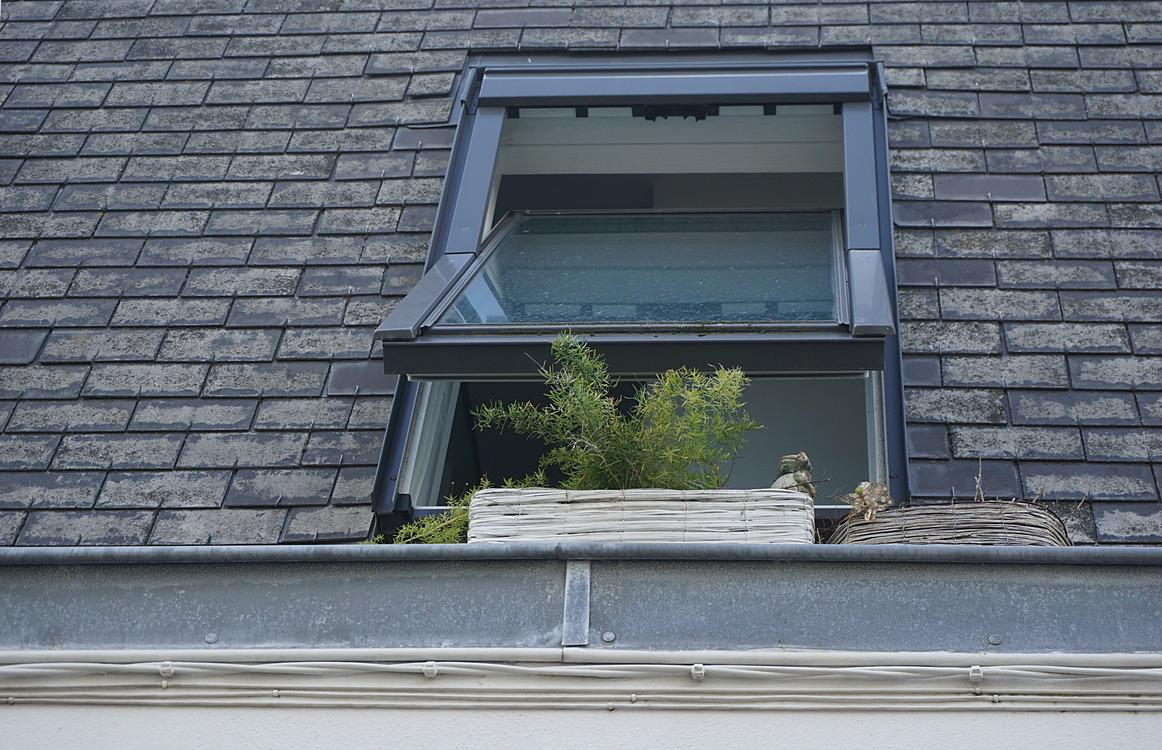 Building,Sash Window,Door