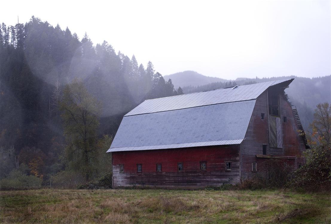 Farmhouse,Meadow,House