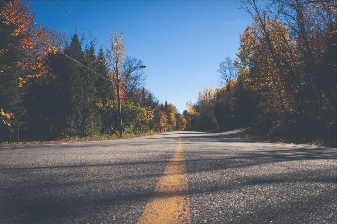 Asphalt,Road Trip,Autumn