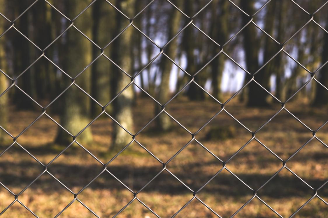 Wildlife,Fence,Animal Shelter