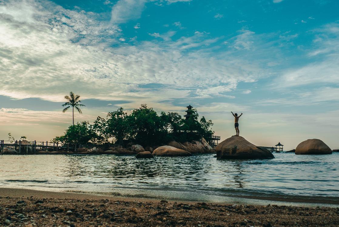 Tourism,Wildlife,Reflection