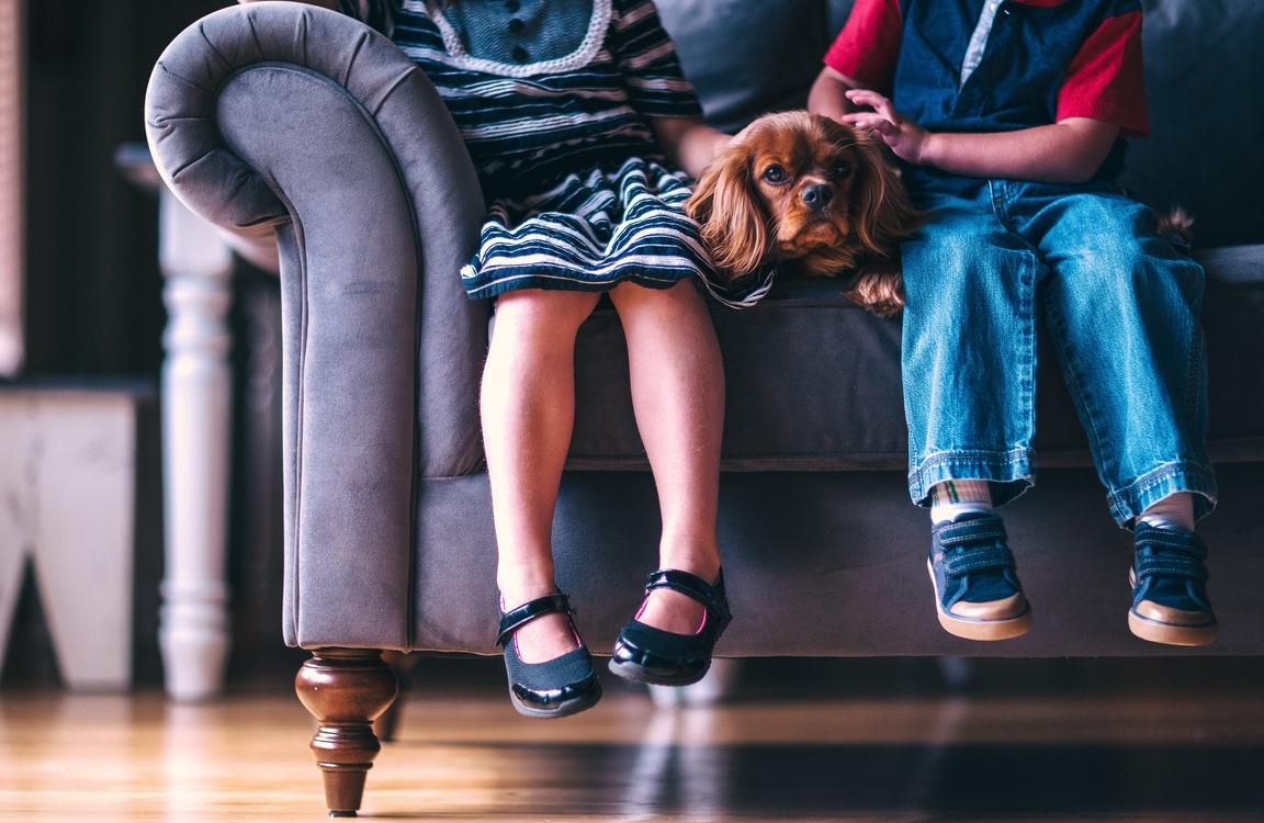 Stepfamily Divorce Child Adoption
