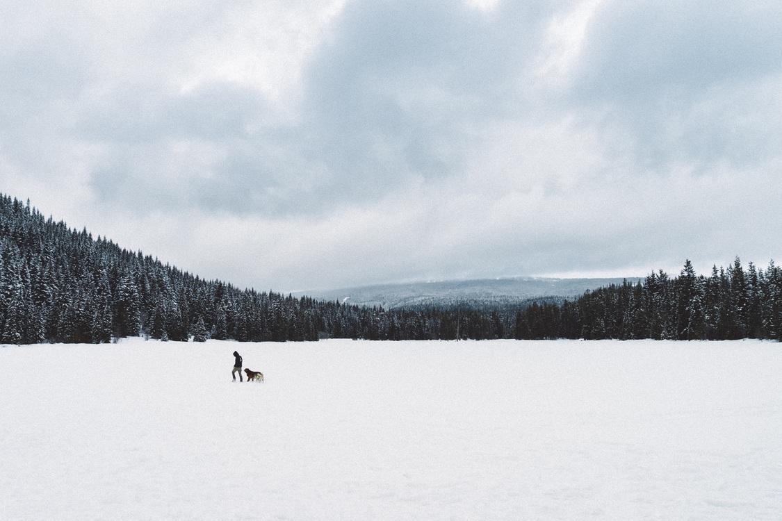 Loch,Terrain,Snow