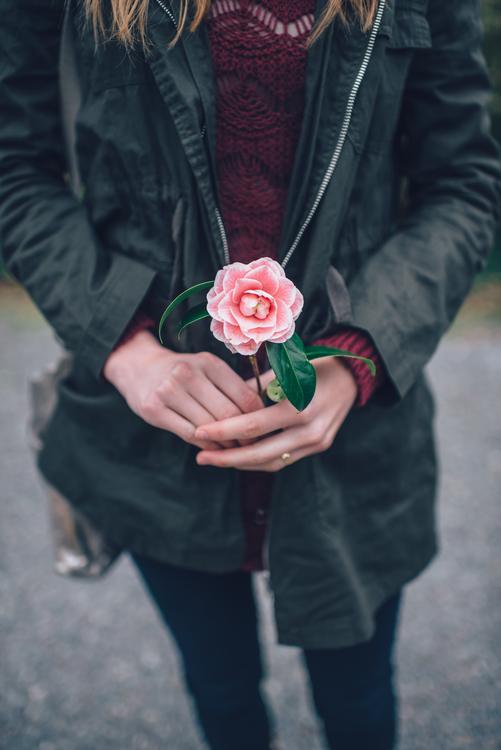Textile,Plant,Fashion