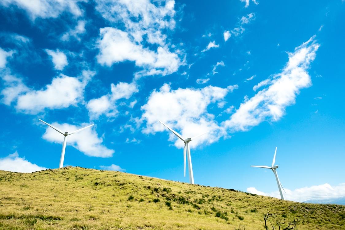 Windmill,Prairie,Meadow