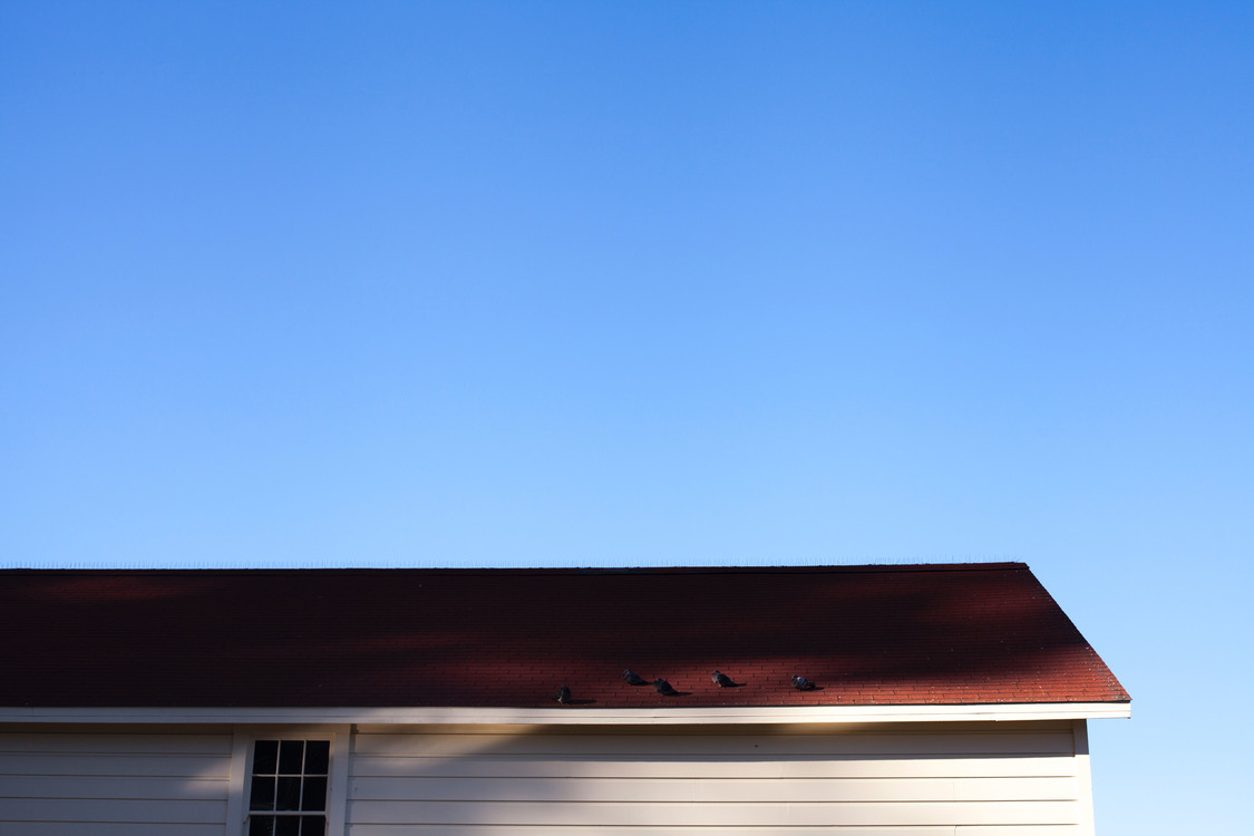 Building,Angle,House