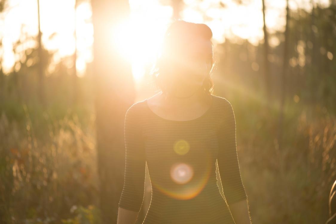 Grass,Sun,Photography