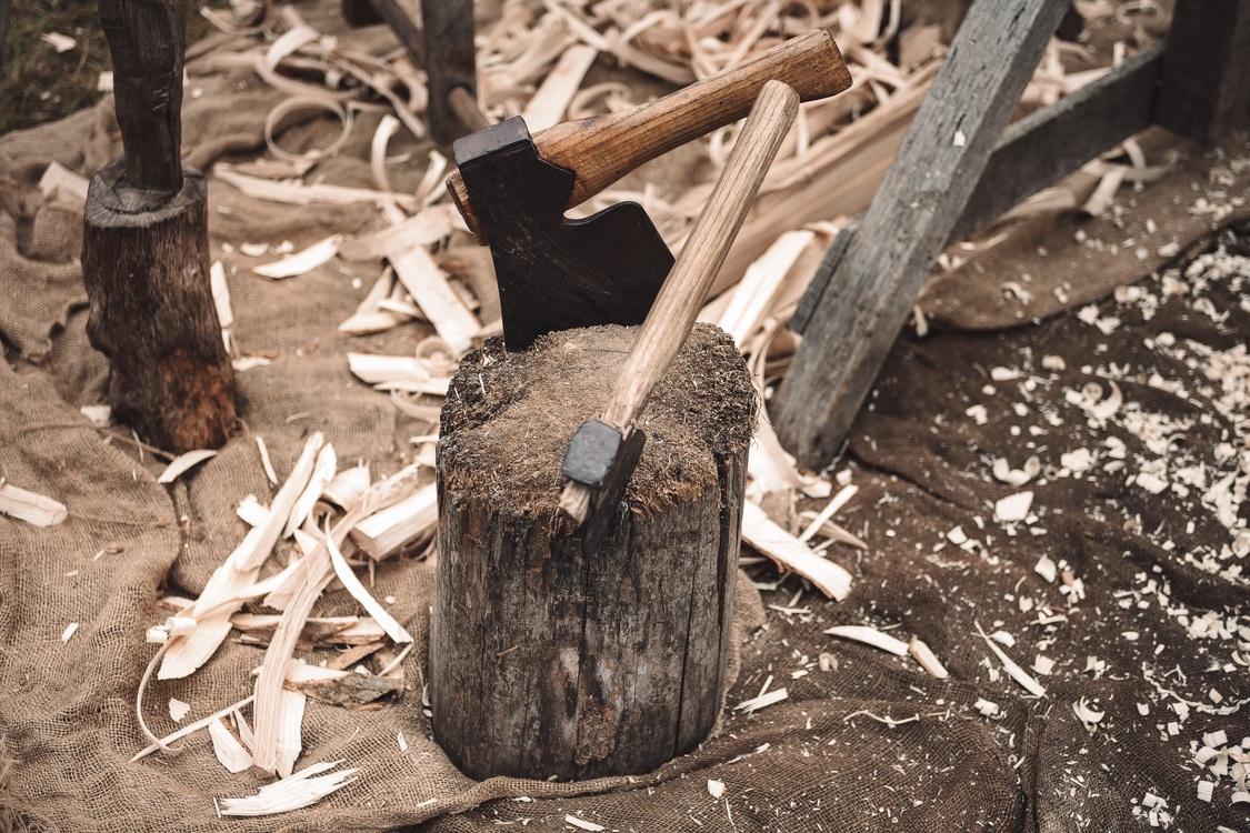 Plant,Wood,Tree
