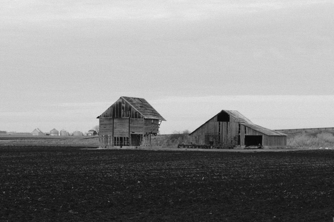 Farm,Monochrome Photography,House