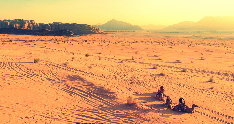 Aeolian Landform,Geology,Ecosystem