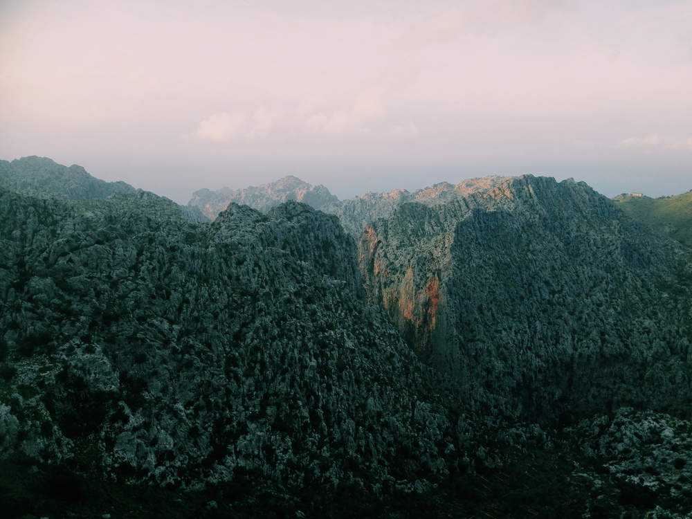 Wilderness,Terrain,Shrubland