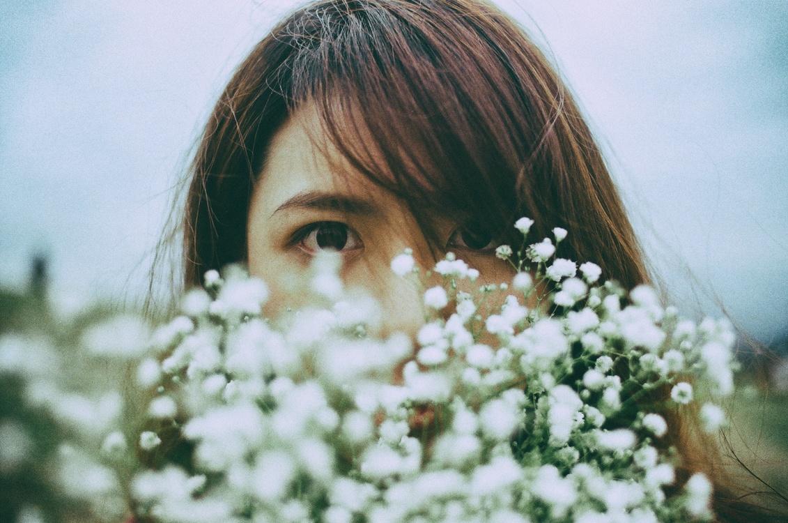 Iris,Plant,Flower