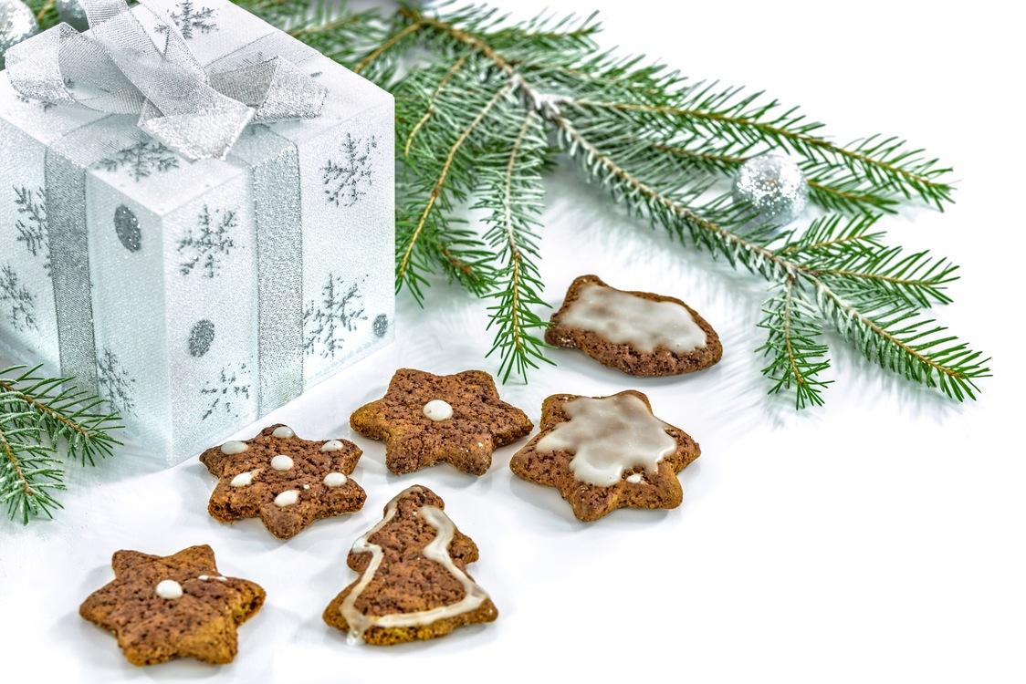 Fir,Pine Family,Christmas Ornament