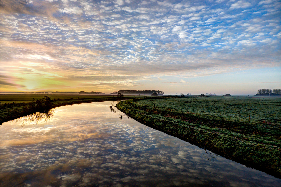 Wetland,Sea,Waterway