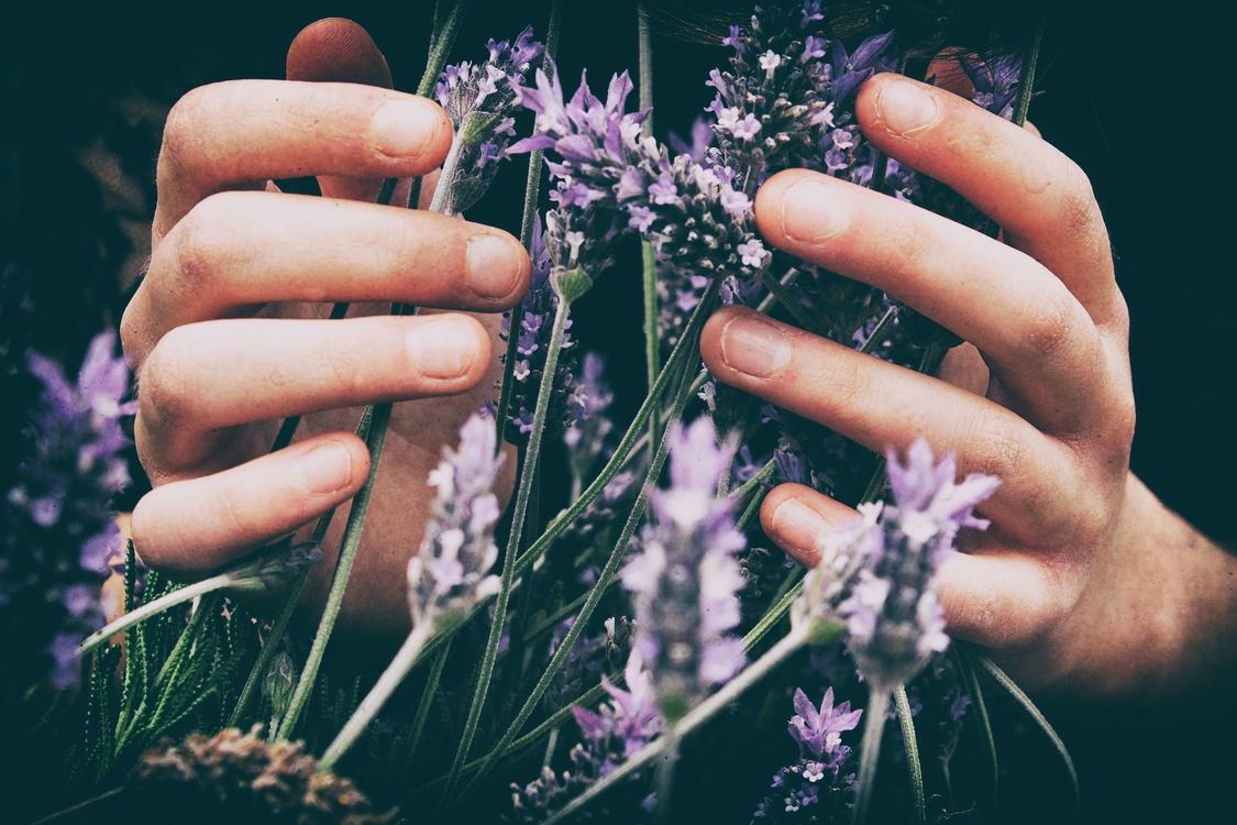 Nail,Purple,Finger