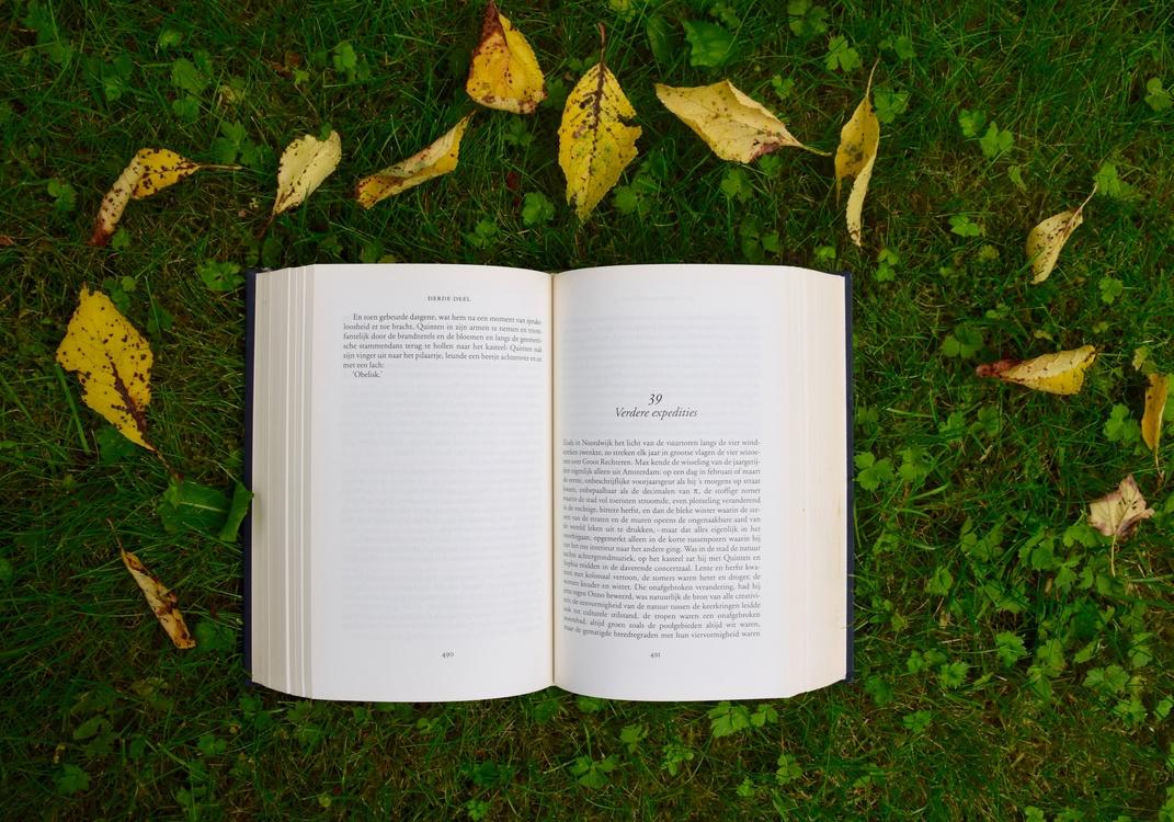 Tree,Grass,Leaf