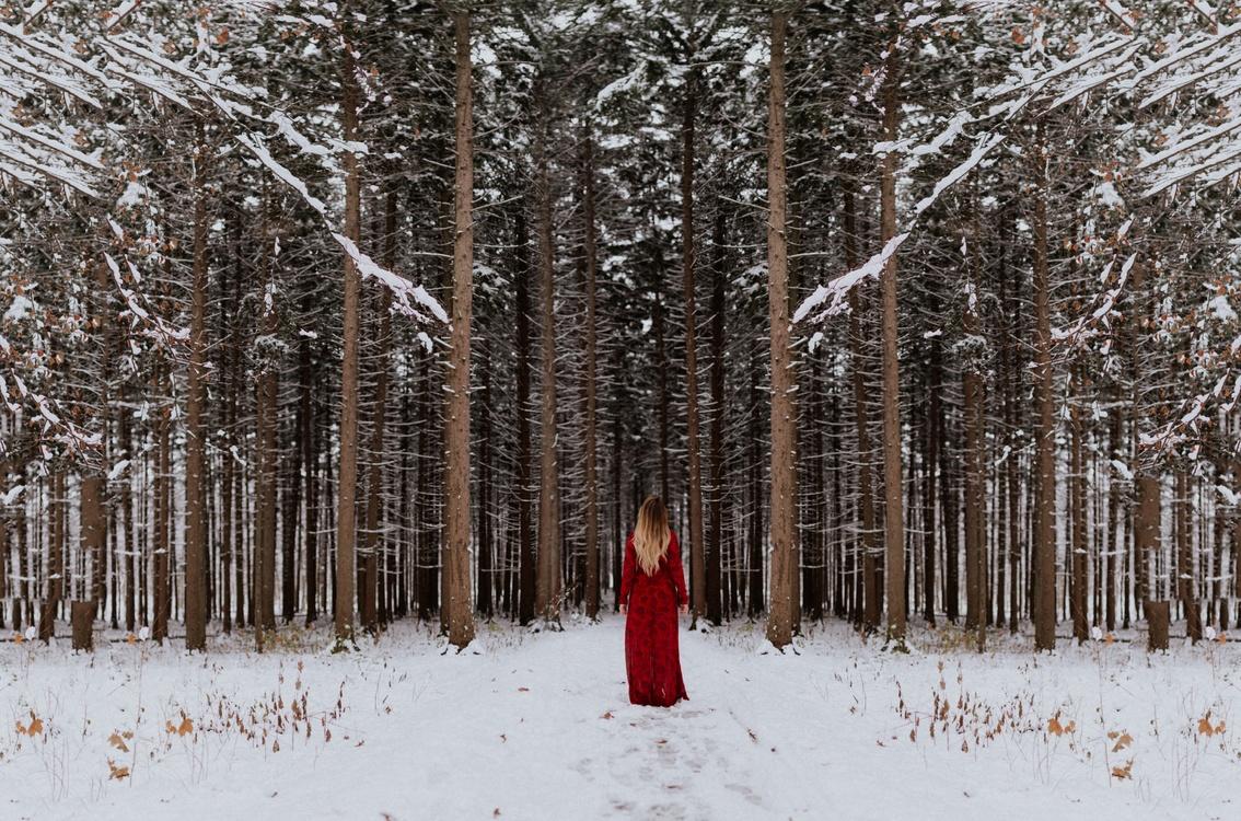 Winter solstice Northern Hemisphere Christmas