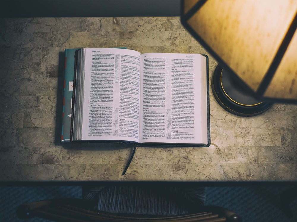 Text,Book,Bible