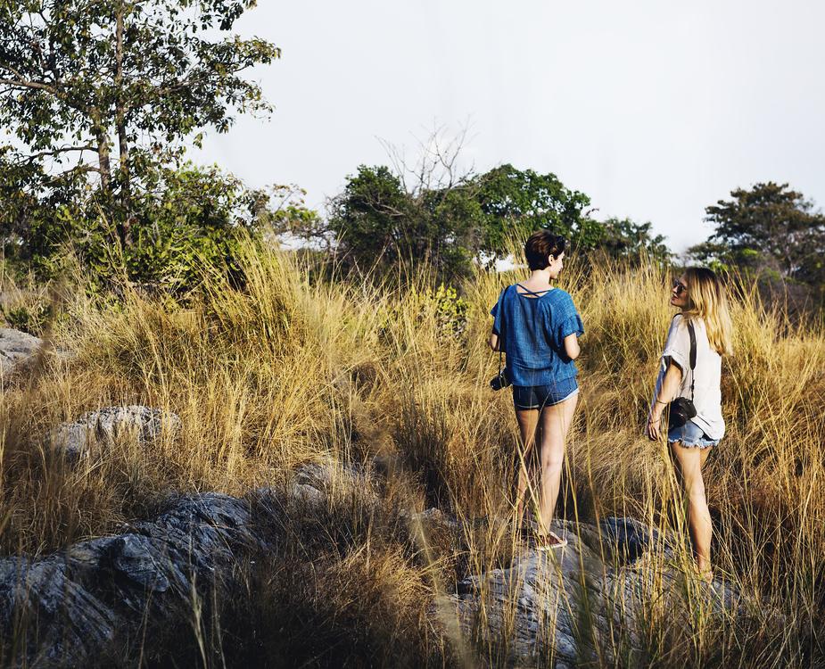 Walking,Wilderness,Grass Family