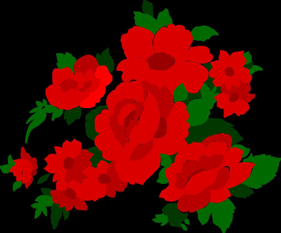 Garden Roses,Petal,Artwork