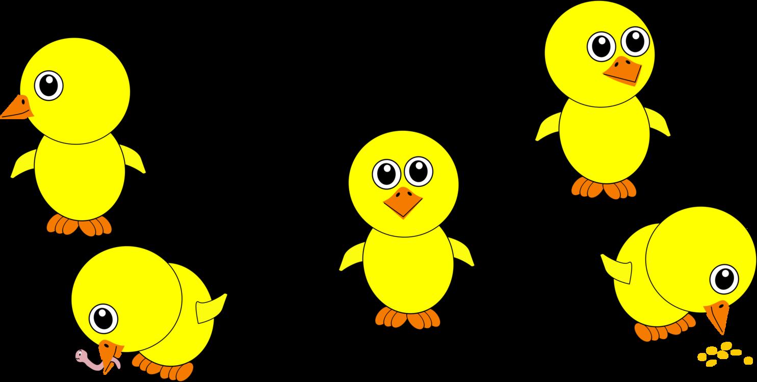 Emoticon,Water Bird,Area